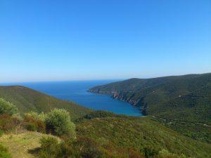 חוף ים עם טבע ביוון